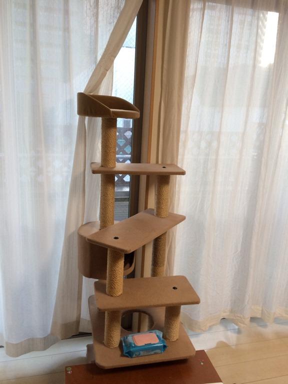 【DIYで解決】猫の粗相にキャットタワー改造で応戦! の巻