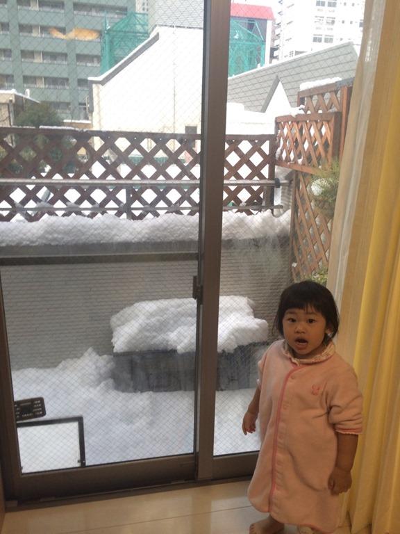 東京で20年ぶりの大雪